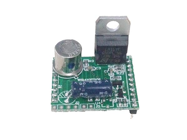 Flammable Gas Sensor